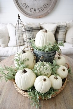 pumpkin-white